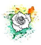 Une tache informe multicolore lumineuse d'aquarelle Symbole graphique à traits fleur d'encre de Rose illustration stock