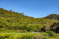Une tache surfante préférée sur la Côte Pacifique australienne dans Apoll photos libres de droits