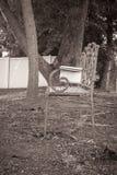 Une tache tranquille de lecture Photos libres de droits