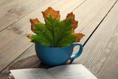 Une tasse avec des feuilles d'automne et un livre Photos stock