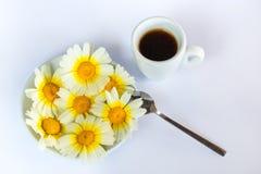Une tasse de café, de camomille d'un plat et d'une cuillère sur un fond blanc Photos libres de droits