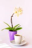 Une tasse de café et d'une petite orchidée blanche Images stock