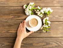 Une tasse de caf? aromatique chaud dans des mains femelles et une branche de floraison de pommier sur un fond en bois Disposition image libre de droits