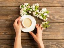 Une tasse de caf? aromatique chaud dans des mains femelles et une branche de floraison de pommier sur un fond en bois Disposition photo stock