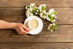 Une tasse de caf? aromatique chaud dans des mains femelles et une branche de floraison de pommier sur un fond en bois Disposition photographie stock
