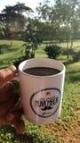 Une tasse de caf? photos libres de droits
