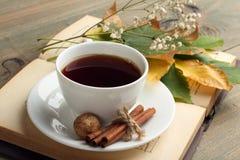 Une tasse de thé avec un livre Images libres de droits