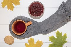 Une tasse de thé chaud avec de la confiture de framboise enveloppée dans une écharpe sur un fond blanc Photos stock