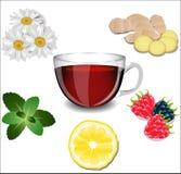 Une tasse de thé et de divers ingrédients Images stock