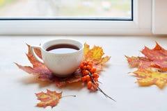 Une tasse de thé noir d'automne Images libres de droits