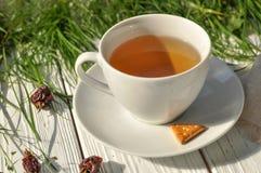 Une tasse de tisane, de quelques biscuits, d'une serviette de toile et d'herbe verte fraîche Photo stock