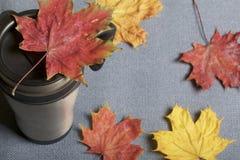 Une tasse thermo, se tenant sur un tissu gris Il est répandu avec les feuilles d'automne tombées de différentes couleurs images libres de droits