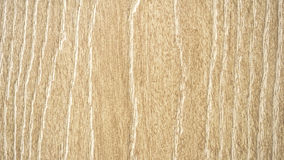 Une texture en bois de porte Photo stock