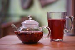 Une théière en verre a rempli de thé chaud de fruit assaisonné avec la pomme et l'épice avec un verre et un fond servis de tache  Photographie stock libre de droits