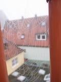 Une toile d'araignées couverte en rosée Photographie stock