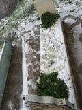 Une tombe photo stock