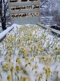 Une tombe photos libres de droits