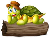 Une tortue au-dessus d'un rondin Image libre de droits