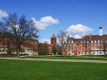 Une tour de cloche grande et des immeubles de brique rouges Photo stock