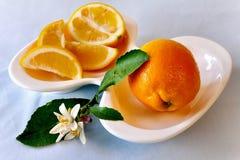 Une tranche de citron photographie stock libre de droits