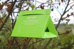 Une trappe d'arbre d'insecte Photos stock