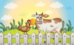 Une vache et un coq Photographie stock