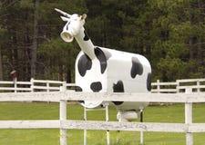 Une vache hybride à ` de ` d'agriculteurs Photo libre de droits