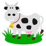 Une vache laitière dans un pâturage Images libres de droits