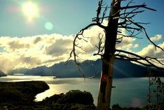 Une vallée dans Bariloche Images libres de droits