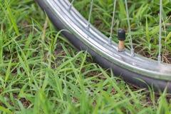 Une valve d'un pneu sur le fond d'herbe Photographie stock libre de droits