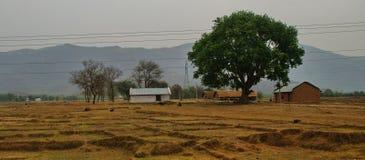 Une vie indienne d'agriculteurs Photo libre de droits