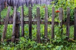Une vieille barrière de décomposition de jardin Photographie stock libre de droits