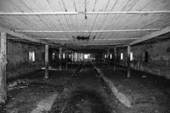 Une vieille ferme abandonnée pour des vaches Style abandonné images libres de droits