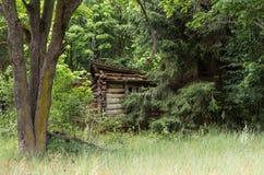 Une vieille hutte dans la forêt A a ruiné la hutte Image libre de droits