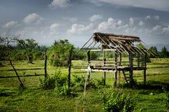 Une vieille hutte dans le domaine de riz Photos stock
