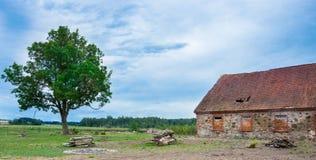Une vieille maison en pierre abandonnée avec un toit carrelé et arbre isolé dans le village photos libres de droits
