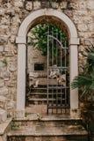 Une vieille porte travaillée qui mène à la cour image stock