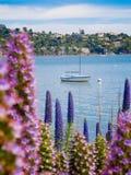 Une ville de bord de la mer à travers l'eau Photo stock