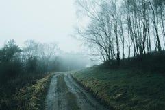 Une voie boueuse par une région boisée fantasmagorique un jour brumeux d'hivers le froid, étant assourdi éditez photographie stock libre de droits
