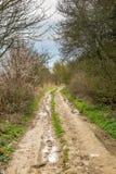 Une voie dans le Sussex rural photographie stock