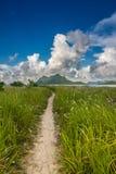 Une voie se dirigeant à une île montagneuse Photo stock