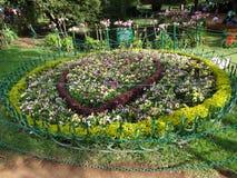 Une vue étroite de jardin indien de jardin ooty, Inde ooty Photos stock