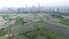 Une vue aérienne d'horizon des poissons cocotent sous le smokey Hong Kong à côté de Shenzhen Chine clips vidéos