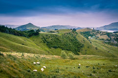 Une vue au-dessus des collines Photo stock