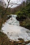 Une vue d'hiver des automnes gelés de cascade Images libres de droits