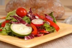 Une vue de côté d'une salade saine croquante d'une plaque jaune avec de la rouille Image libre de droits