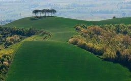 Une vue des collines vertes de la Toscane Photos stock
