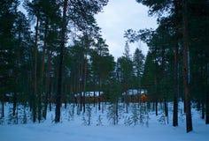 Une vue des cottages rouges derrière les pins verts en hiver photos libres de droits