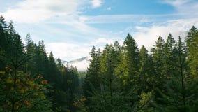 Une vue des montagnes voisines du point en parc clips vidéos