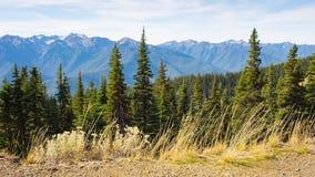 Une vue des montagnes voisines du point en parc banque de vidéos